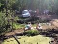 Dwa hipopotamy nad bagienkiem