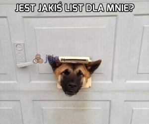 Jest jakiś list dla mnie?