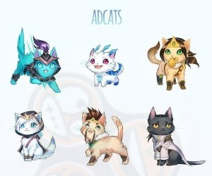 League of Cats