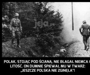 Polacy to dumny naród
