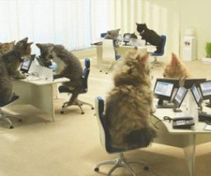 Tak wygląda tajne centrum zarządzania internetem