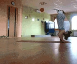 Kot i joga