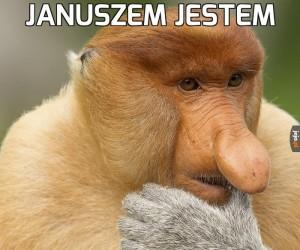 Refleksyjny Janusz