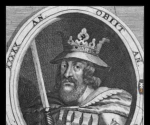 Harald Sinozęby