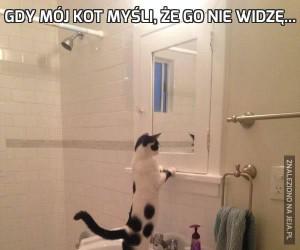 Gdy mój kot myśli, że go nie widzę...