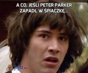 A co, jeśli Peter Parker zapadł w śpiączkę...
