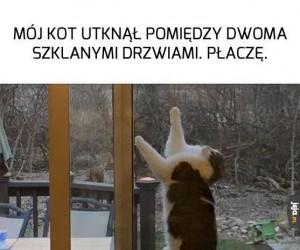Człowiek... pls...