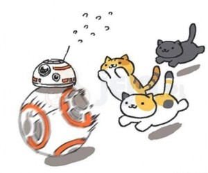 Gdy BB-8 spotkał koty