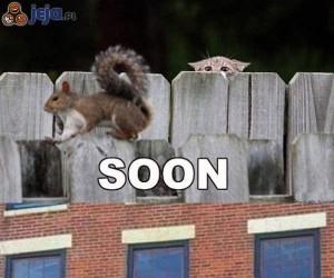 """Już wkrótce..."""