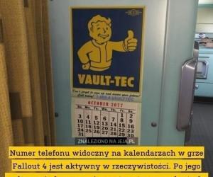 Infolinia Fallouta