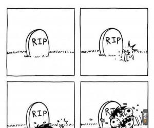 Dobry powód, aby zmartwychwstać