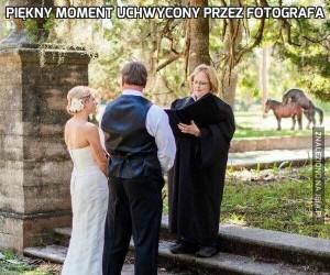 Piękny moment uchwycony przez fotografa