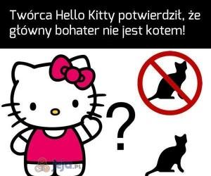 Hello Kitty nie jest kotem. Co na to inni?