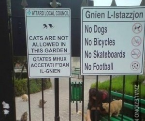 Zakazy, jakie zakazy?
