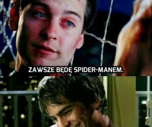 Proszę Państwa, ogłosili nowego Spidermana