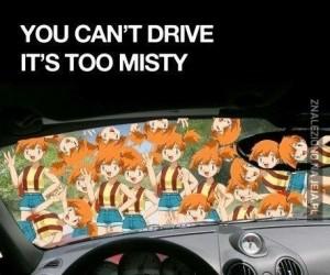 Nie możesz tu prowadzić...