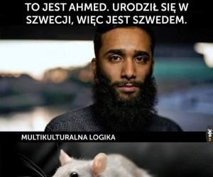 Logika multikulti