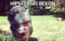 Hipsterski bekon