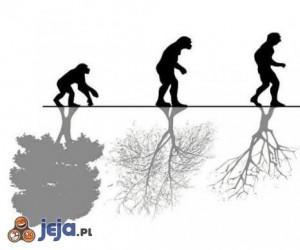 Ewolucja ludzkości i natury