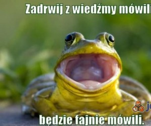 I oto jestem żabą