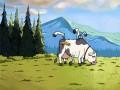 Krowa z Czarnobyla