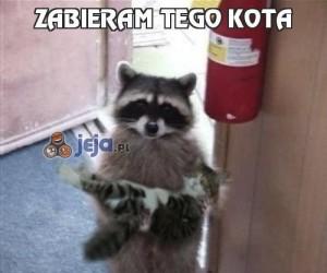 Zabieram tego kota
