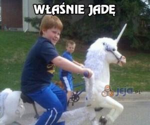 Każda dziewczyna chce rycerza na białym koniu