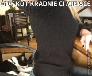 Gdy kot kradnie Ci miejsce