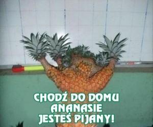 Na tego ananasa już czas!