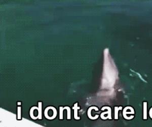Nie obchodzi mnie to, więc spływam