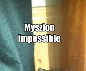 Myszion impossible
