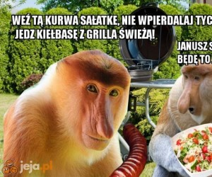 Wegetarianin vs Janusz na grillu