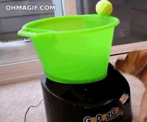Maszyna do rzucania piłki