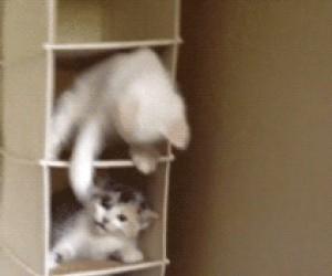 Koteły podwieszane