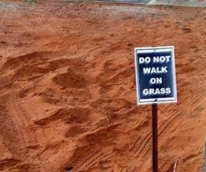 Nie deptać trawy