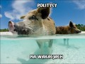 Politycy na wakacjach