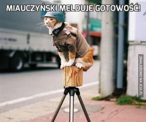 Miauczyński melduje gotowość!