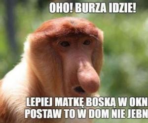 Polski piorunochron