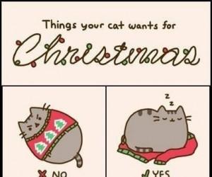 Co Twój kot chce na Święta