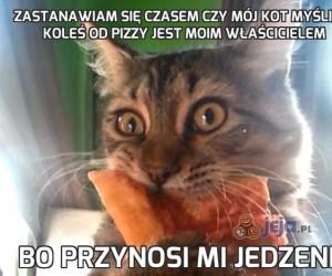 Zastanawiam się czasem czy mój kot myśli, że koleś od pizzy jest moim właścicielem