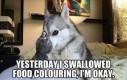 Połknąłem barwnik spożywczy