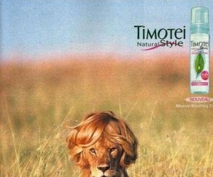 Timotei Natural Style