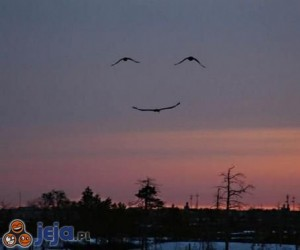 Uśmiechnięte niebo