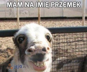 Mam na imię Przemek