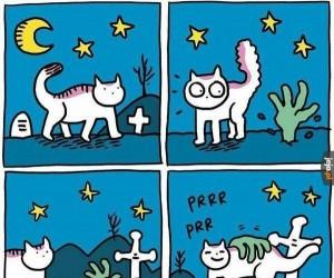 Kot i zombie