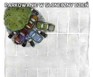 Parkowanie w słoneczny dzień