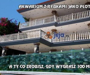 Akwarium z rybkami jako płot