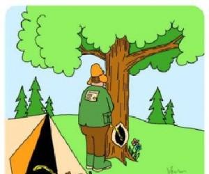 Równowaga w naturze