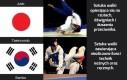 Sztuki walki w różnych krajach