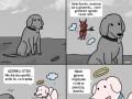 Psie dylematy: perfumy czy godność?